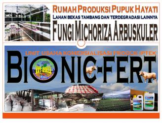 FMA (Fungi Michoryza Asburkuler)